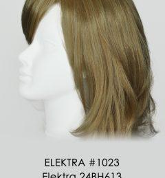 ELEKTRA #1023