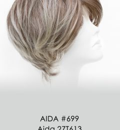 AIDA #699